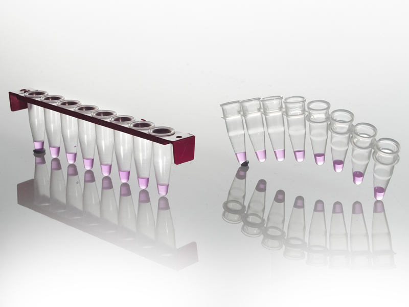 FrameStrip® 8 Well PCR Tube Strip