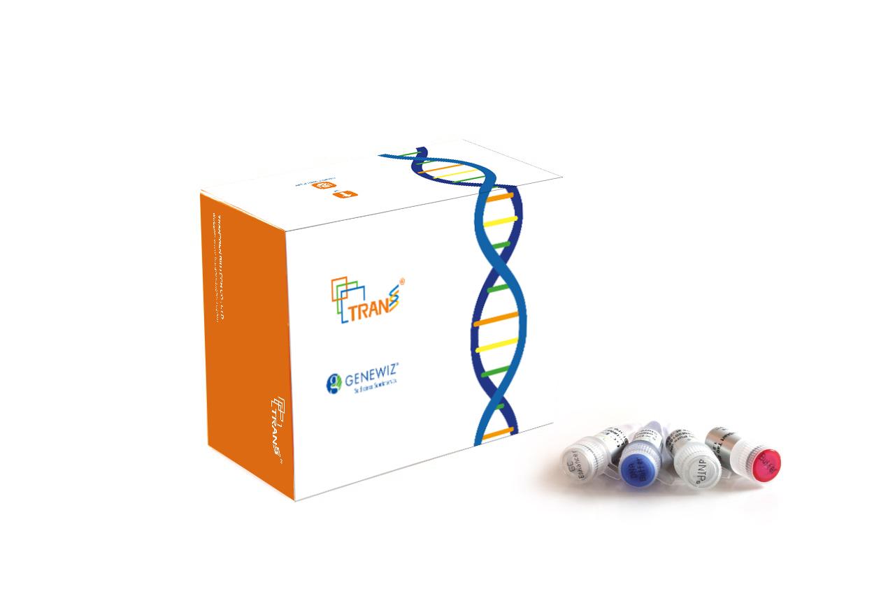 TransStart®  Taq DNA Polymerase  (with 2.5 mM dNTPs)